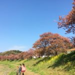 2019年 道の駅 下賀茂 車中泊4日目