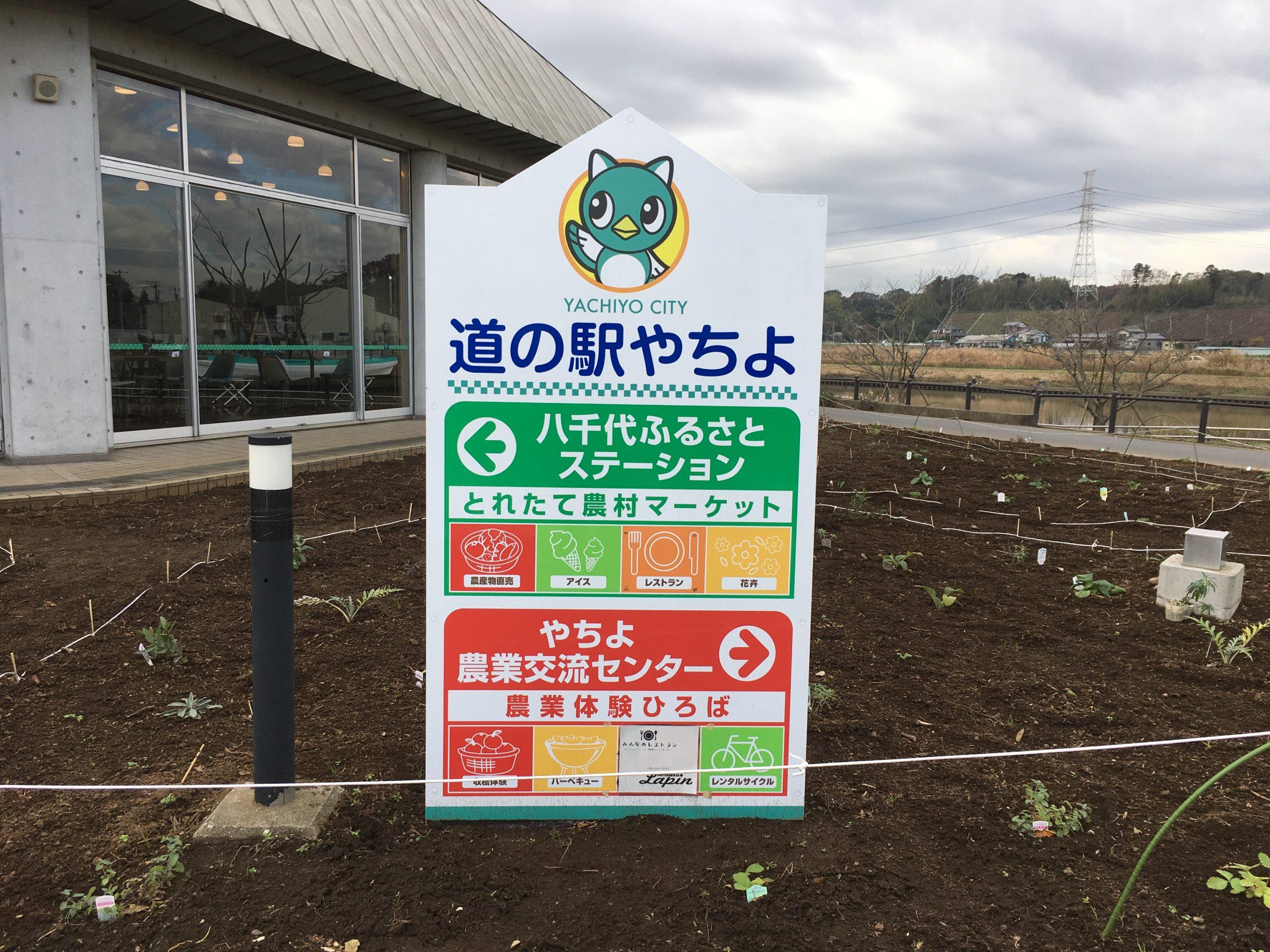 2019年 車中泊13日目(道の駅やちよ)