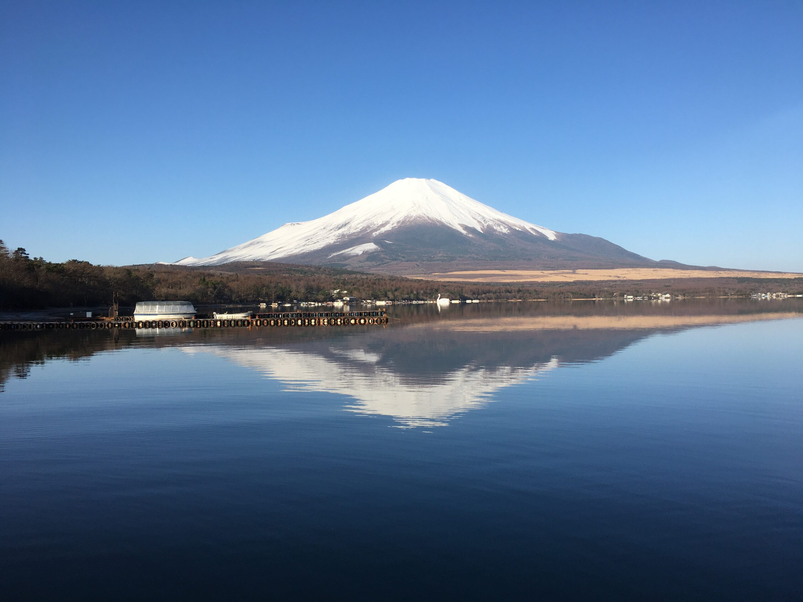 2021年 小田急山中湖フォレストコテージ